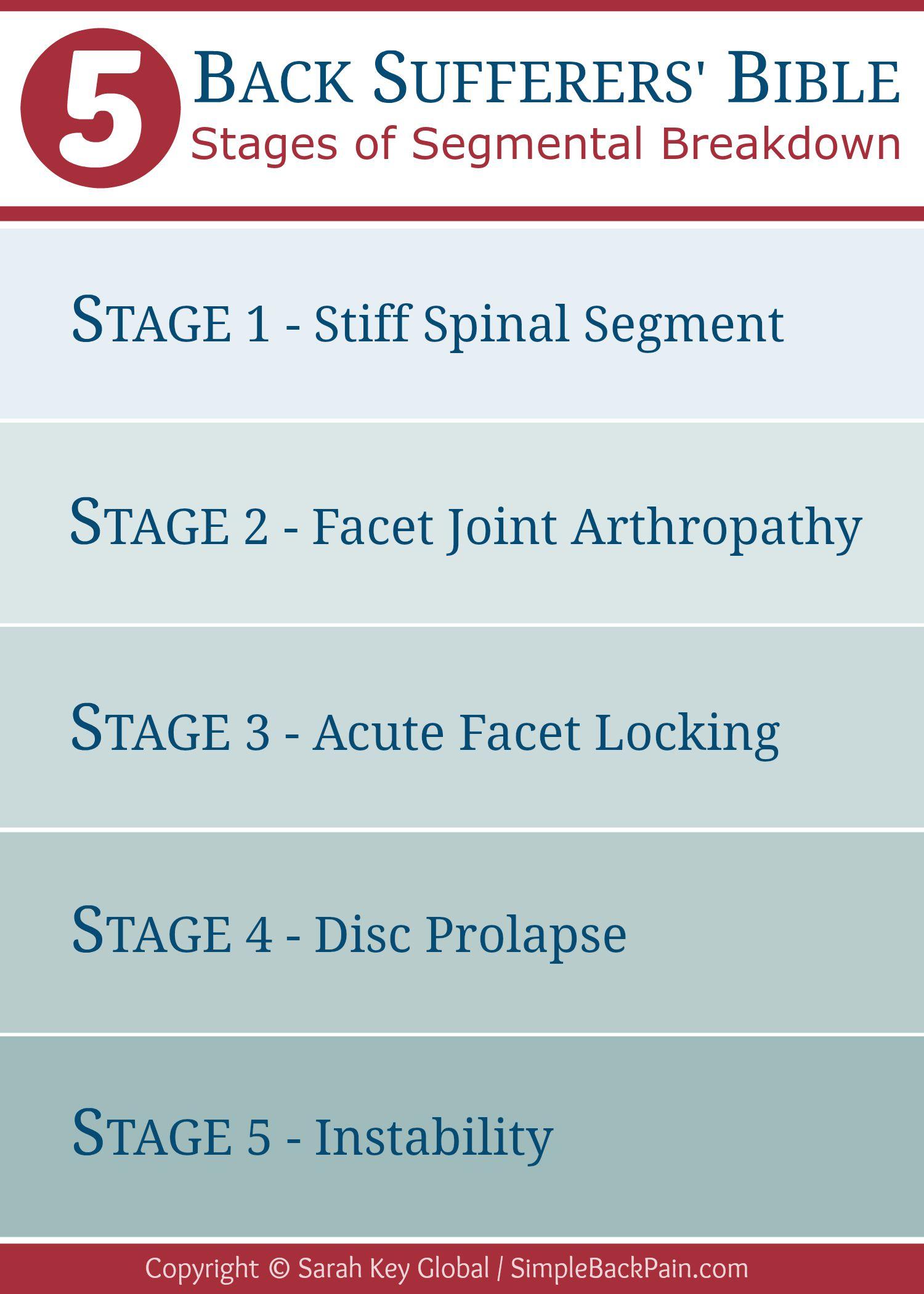 Stages of Segmental Breakdown Back Sufferers Bible