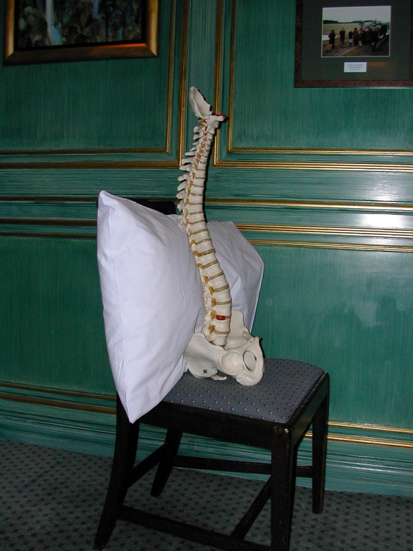 A chair pillow stops the spine slumping into a C-bend with prolonged sitting